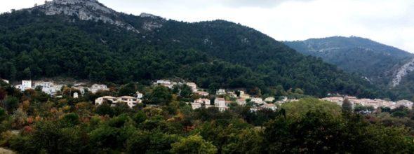 Réglementation de l'accès aux massifs forestiers en période estivale