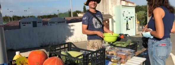 LA SAISON EST TERMINEE : Fruits et Légumes au naturel